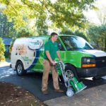 The 10 Best Carpet Cleaning Services in Dallas for Pet Stains post image